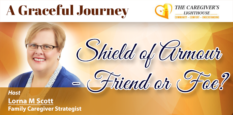 Shield of Armour - Friend or Foe - A Graceful Journey Ep 09 - TLR Station Blog Cover